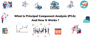 What Is Principal Component Analysis